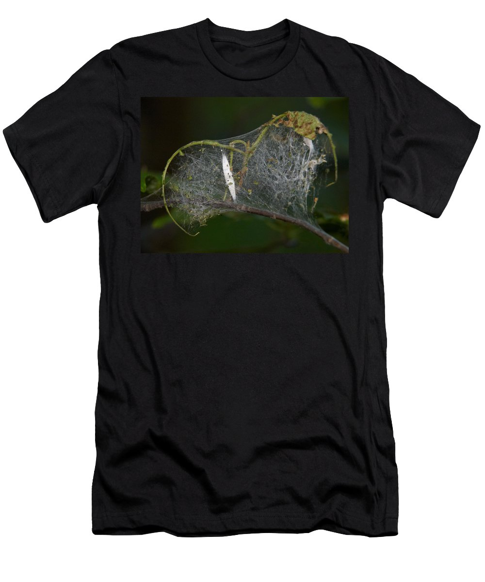 Jouko Lehto Men's T-Shirt (Athletic Fit) featuring the photograph Bird-cherry Ermine Caterpillars by Jouko Lehto