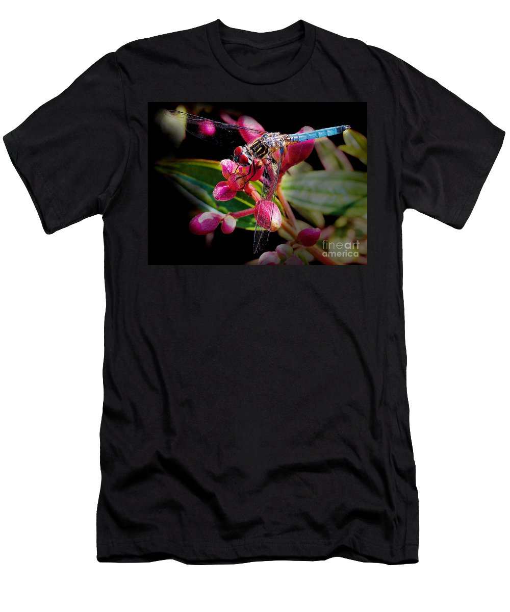 Dragonfly Men's T-Shirt (Athletic Fit) featuring the photograph Blue Dasher Dragonfly by Judi Bagwell