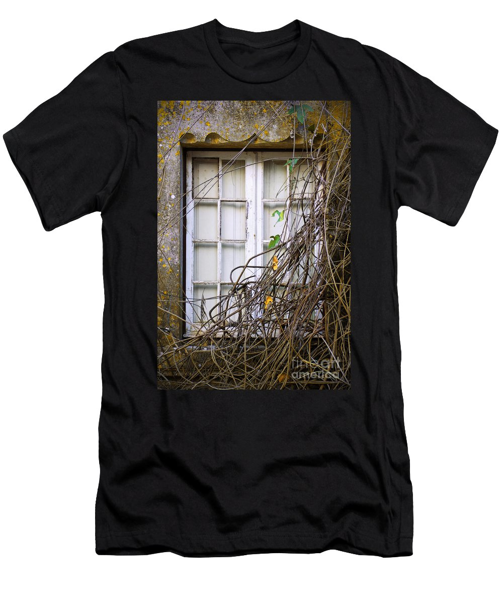 Autumn Men's T-Shirt (Athletic Fit) featuring the photograph Branchy Window by Carlos Caetano
