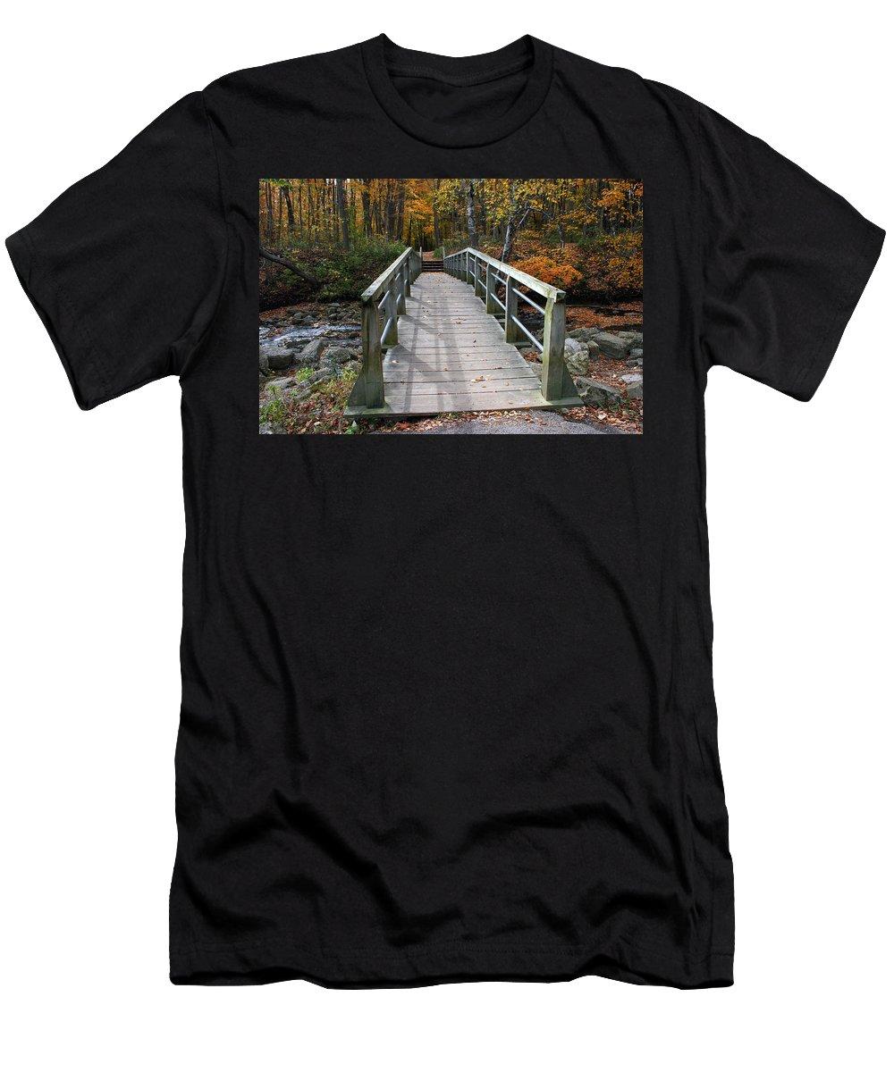 Autumn Men's T-Shirt (Athletic Fit) featuring the photograph Bridge Into Autumn by Kay Novy