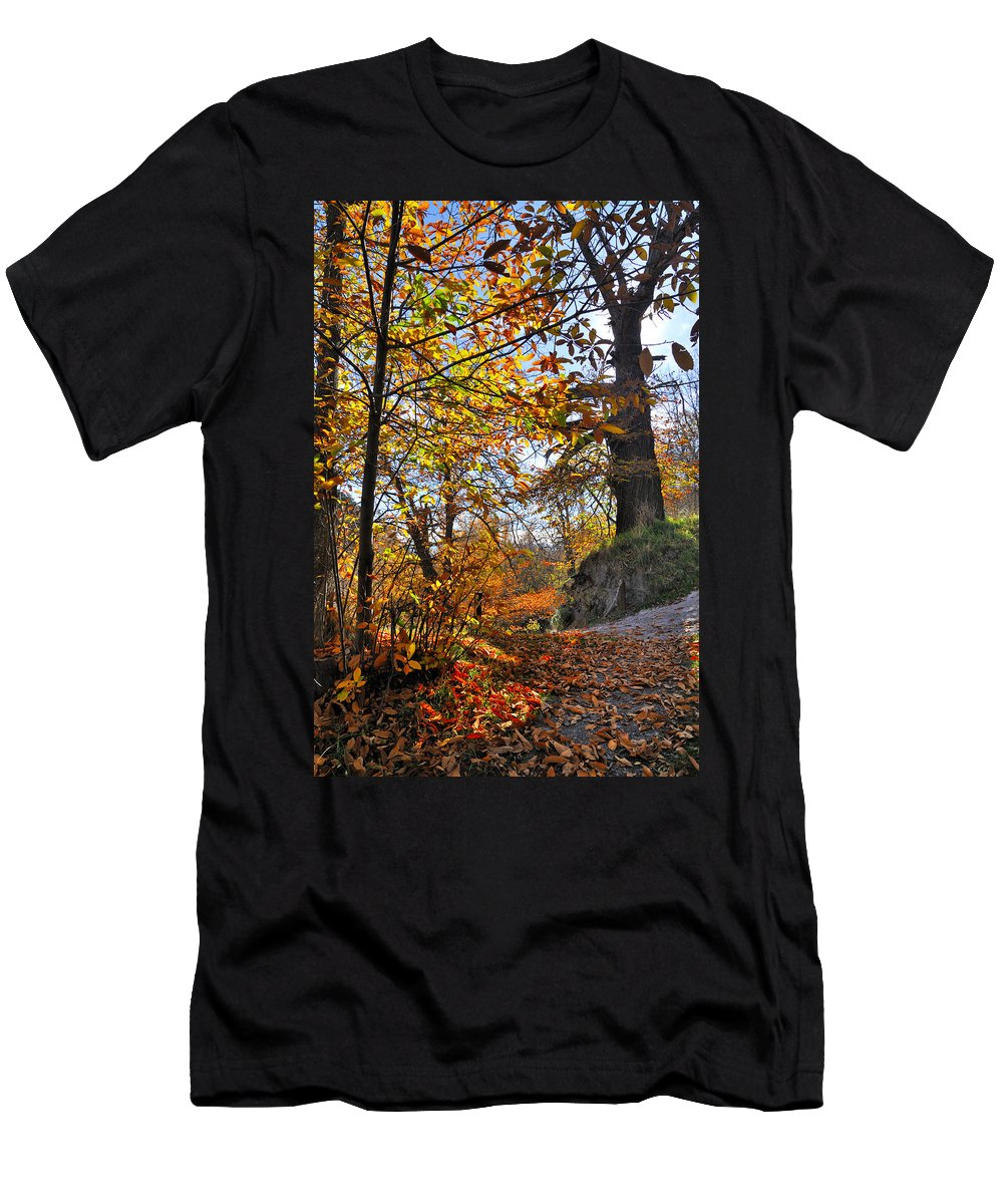 Landscapes Men's T-Shirt (Athletic Fit) featuring the photograph Bright Leaves by Guido Montanes Castillo