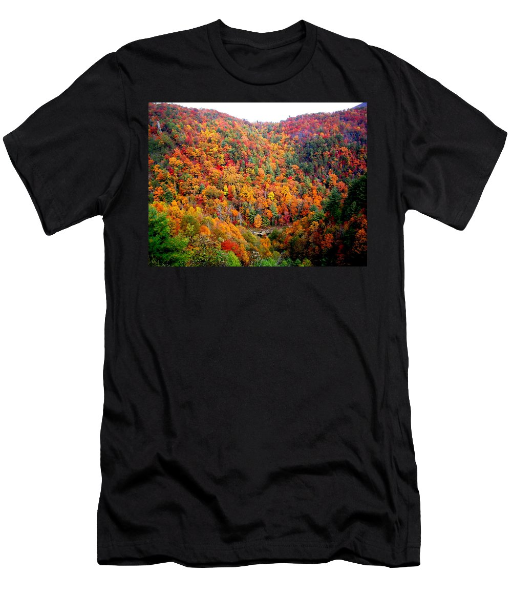 Vacation Men's T-Shirt (Athletic Fit) featuring the photograph Brilliant Color Trees by April Patterson