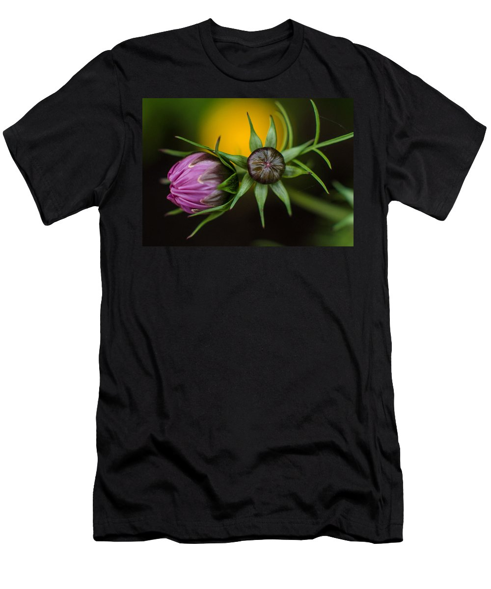 Cosmos Flower Men's T-Shirt (Athletic Fit) featuring the photograph Buds by Greg Nyquist