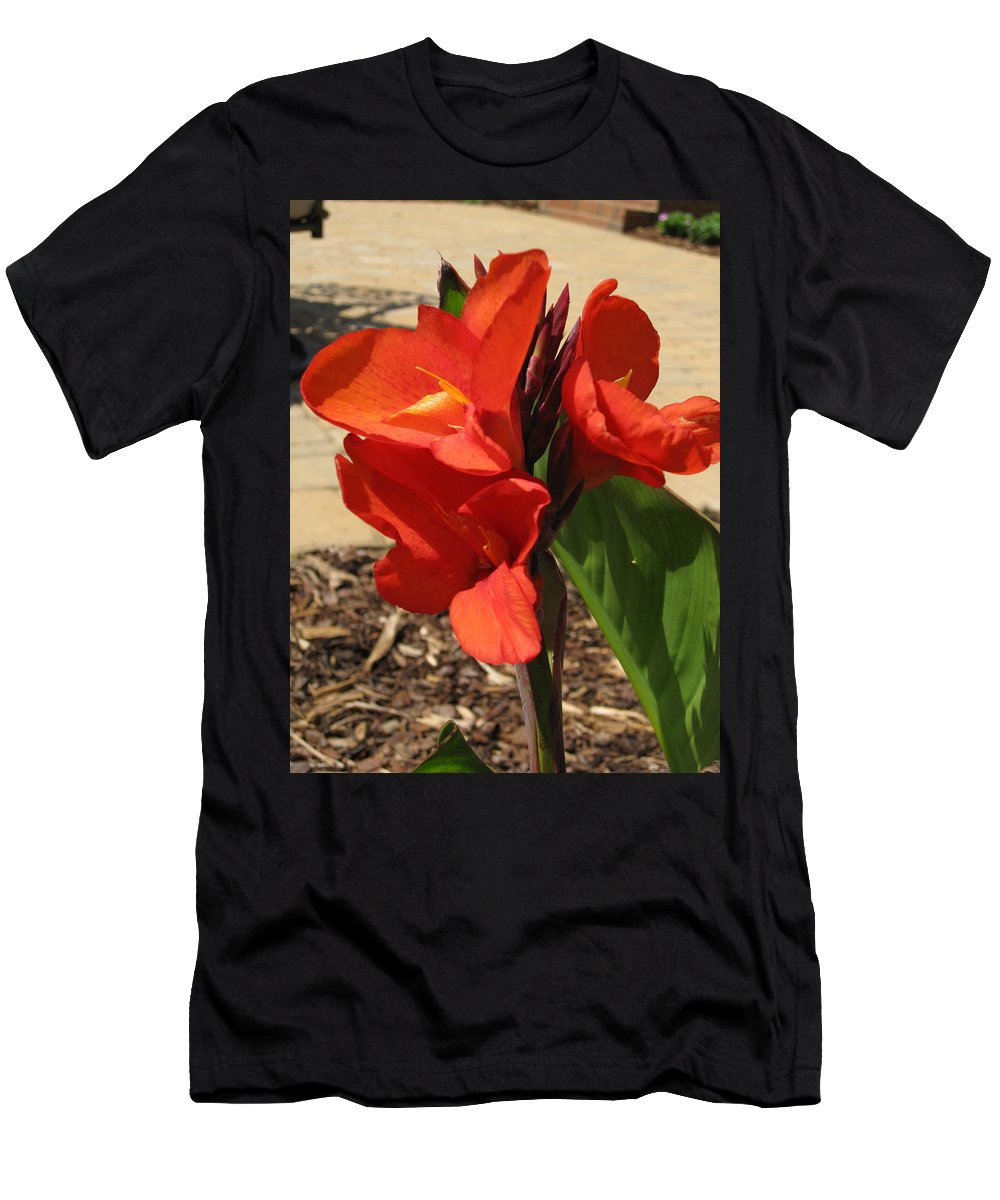 Canna Lilly Men's T-Shirt (Athletic Fit) featuring the photograph Cannas by Megan Cohen