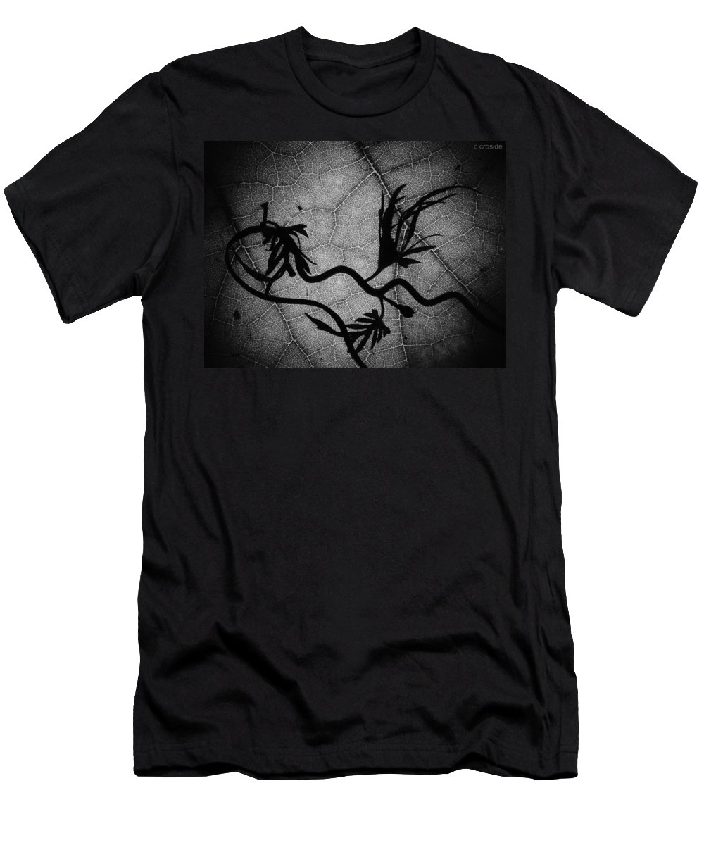Vines Men's T-Shirt (Athletic Fit) featuring the photograph Cardinal Vine by Chris Berry
