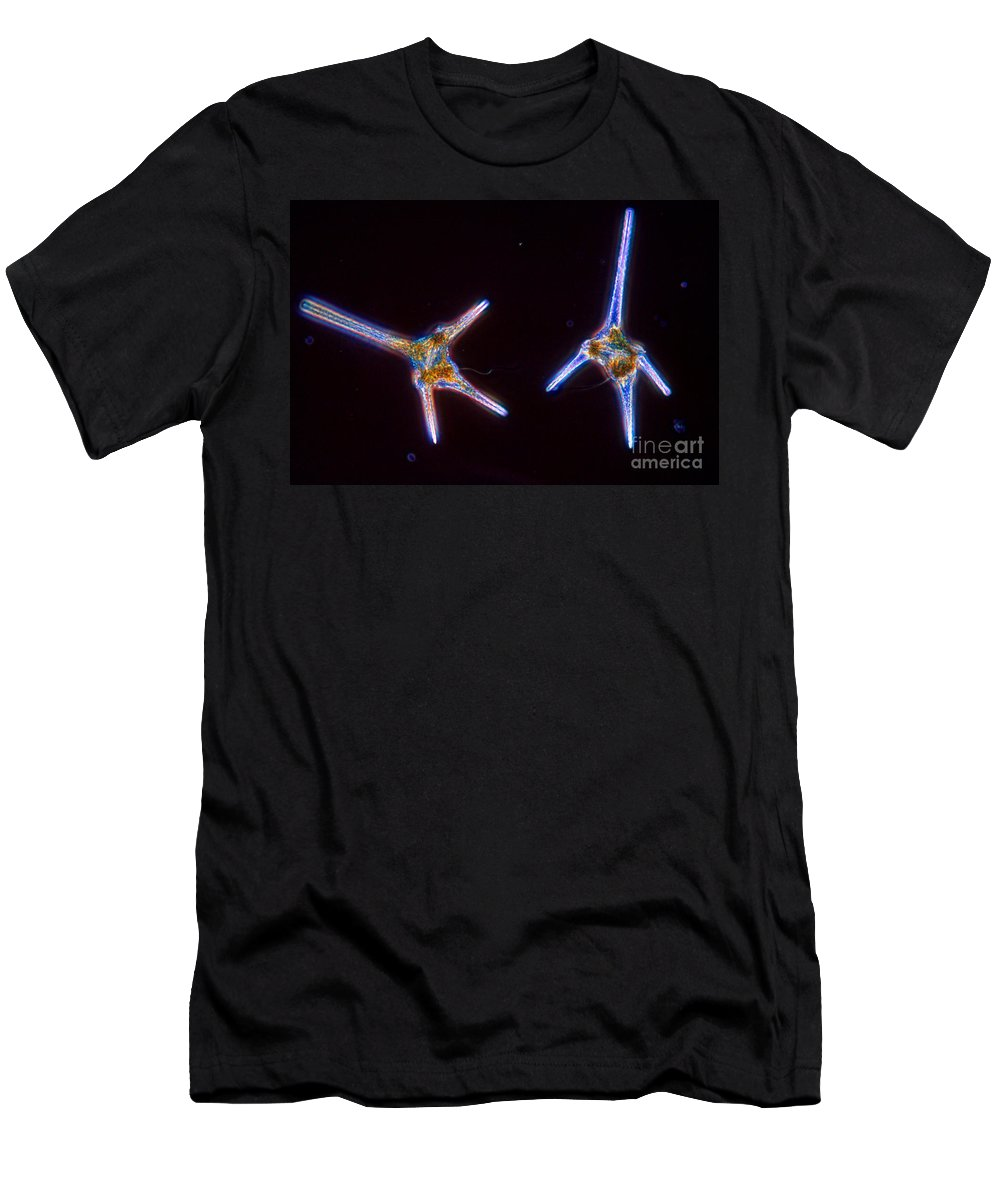 Dinoflagellate Men's T-Shirt (Athletic Fit) featuring the photograph Ceratium Hirundinella by M I Walker