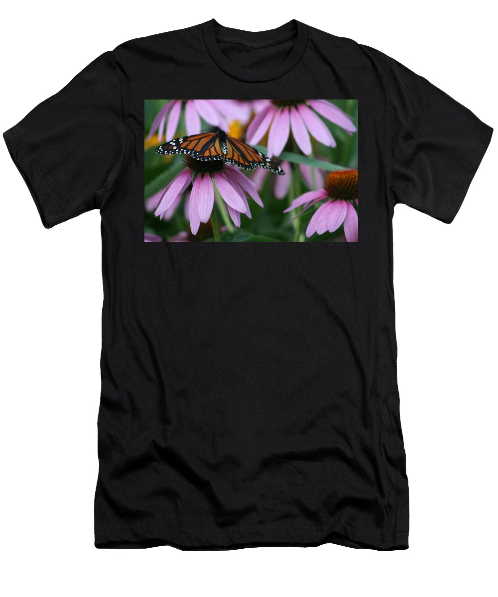 Nature Men's T-Shirt (Athletic Fit) featuring the photograph Cone Flowers And Monarch Butterfly by Kay Novy