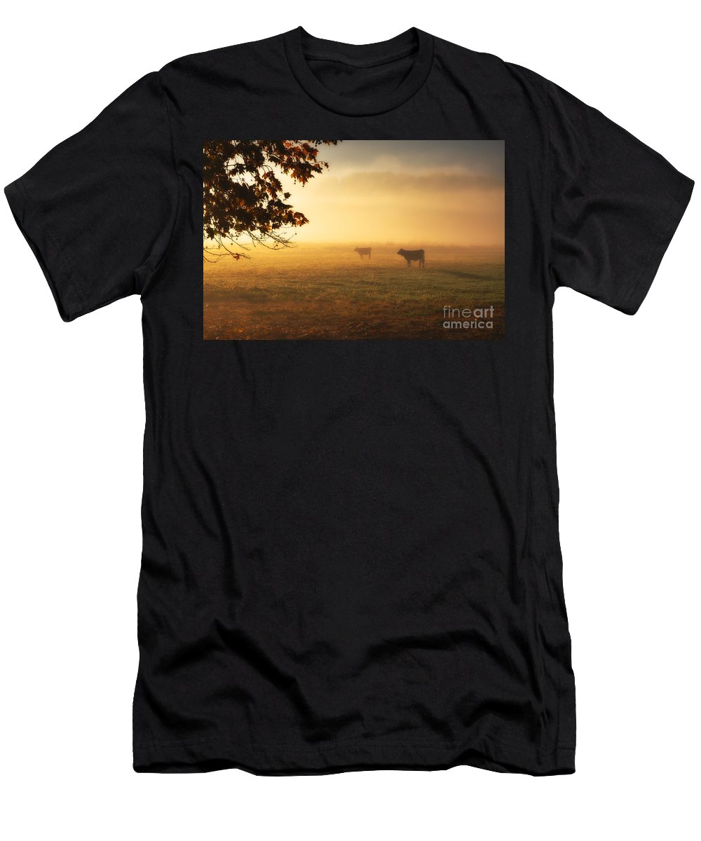 Cows Men's T-Shirt (Athletic Fit) featuring the photograph Cows In A Foggy Field by Mats Silvan