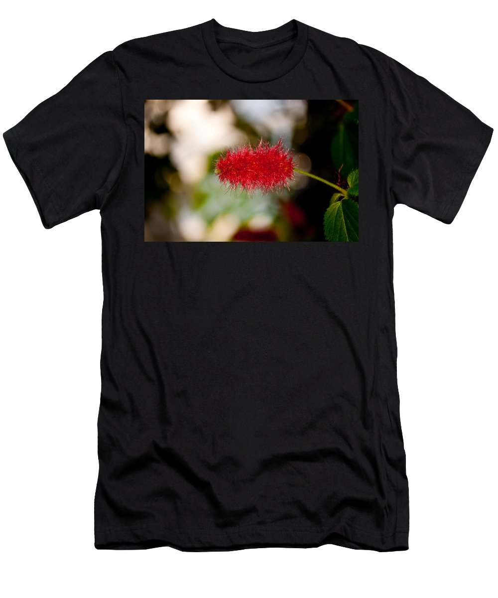 Bottle Brush Men's T-Shirt (Athletic Fit) featuring the photograph Crimson Bottle Brush by Tikvah's Hope