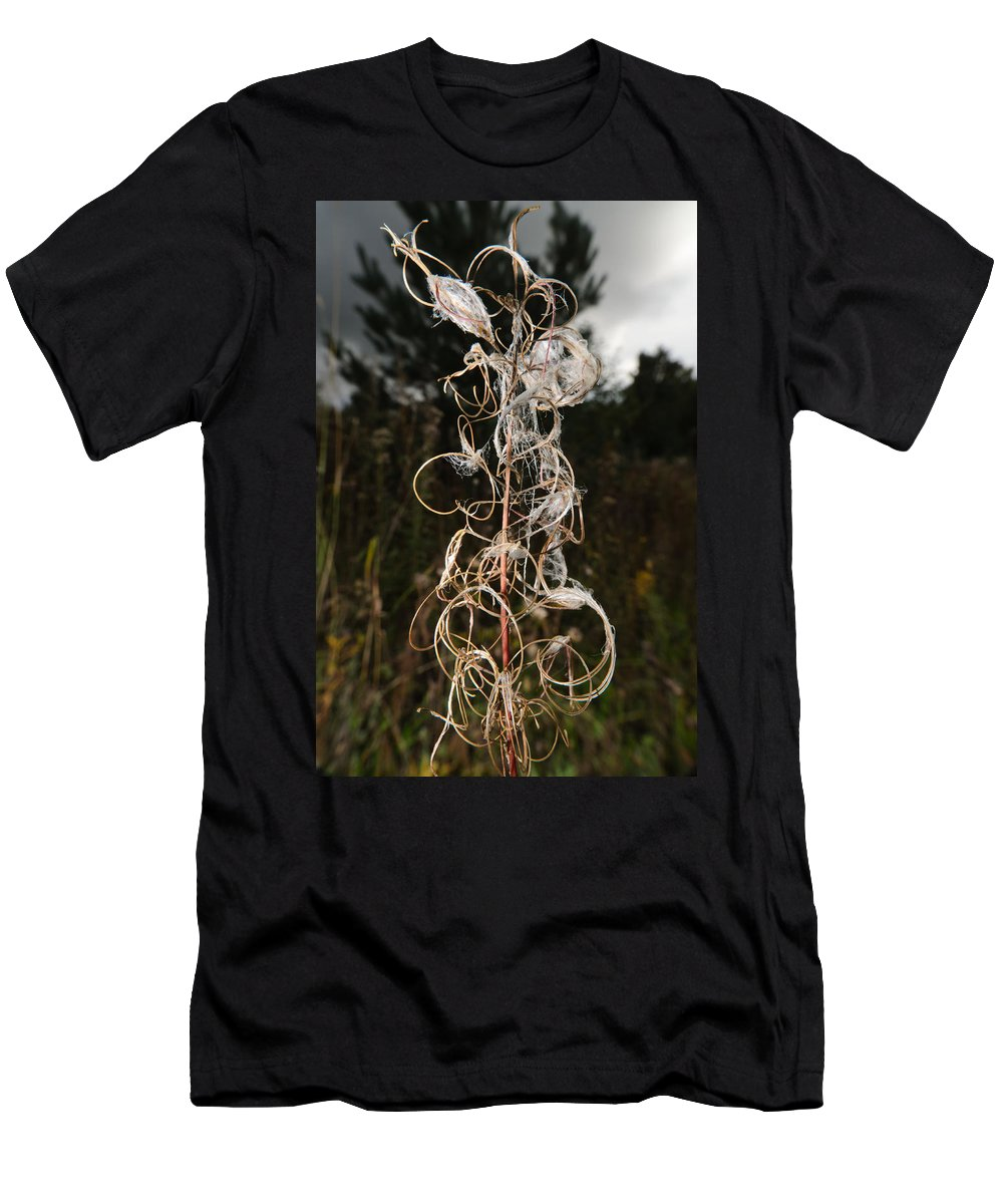 Closeup Men's T-Shirt (Athletic Fit) featuring the photograph Curls by Michael Goyberg