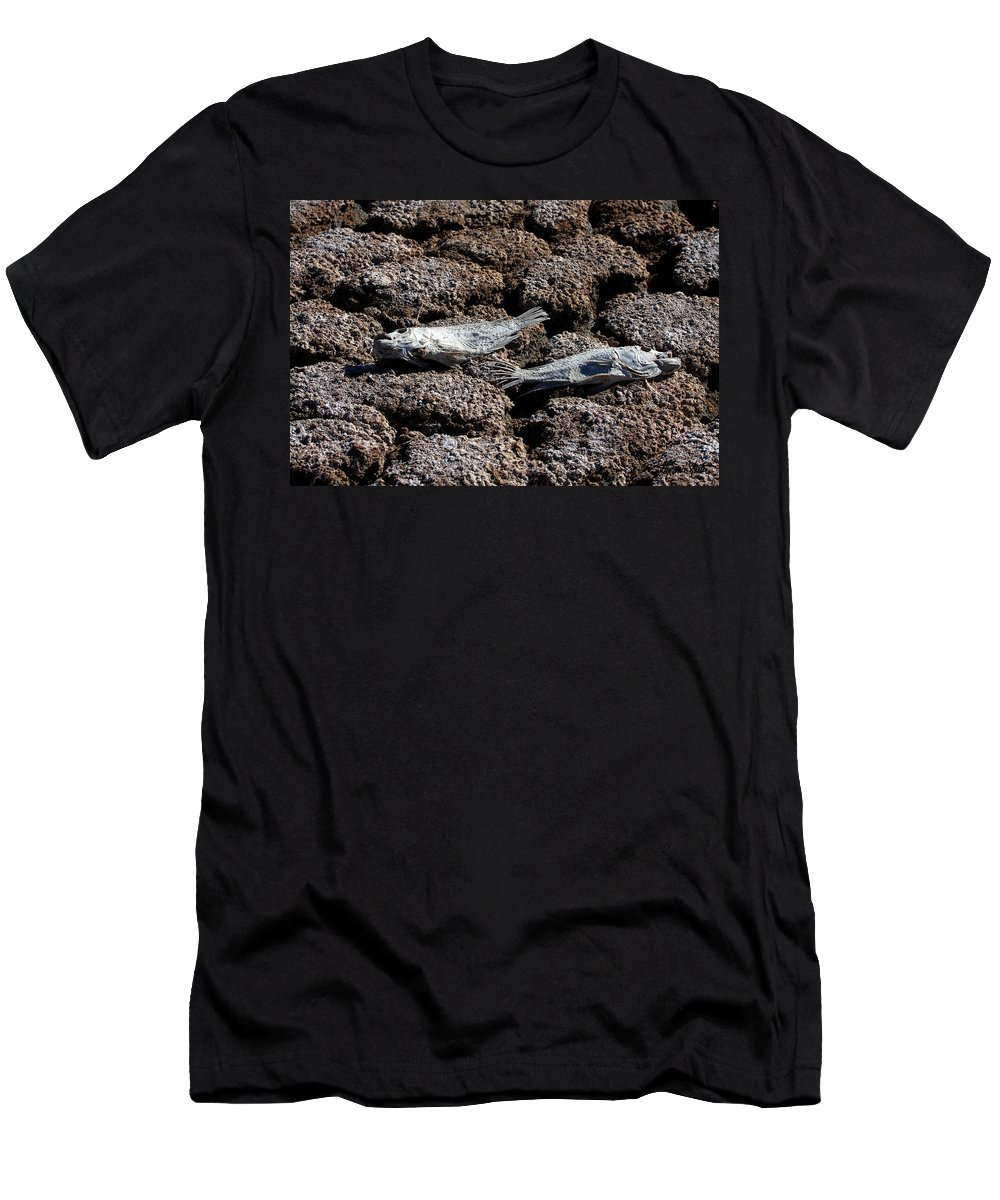 Nature Men's T-Shirt (Athletic Fit) featuring the photograph Salton Sea Dead Tilapia by Stephanie Salter