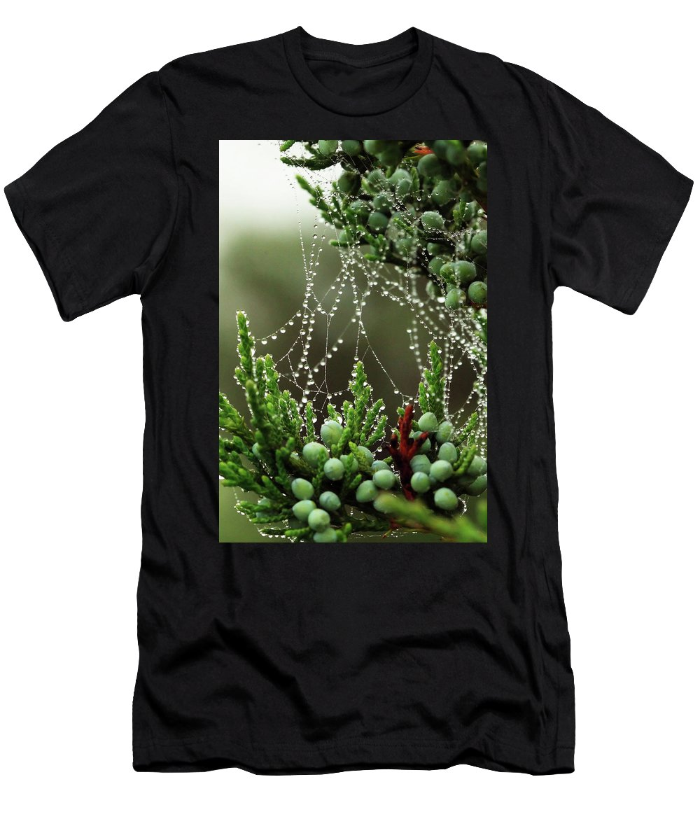 Web Men's T-Shirt (Athletic Fit) featuring the photograph Decorated Bush Quogue Wildlife Preserve by Rick Berk