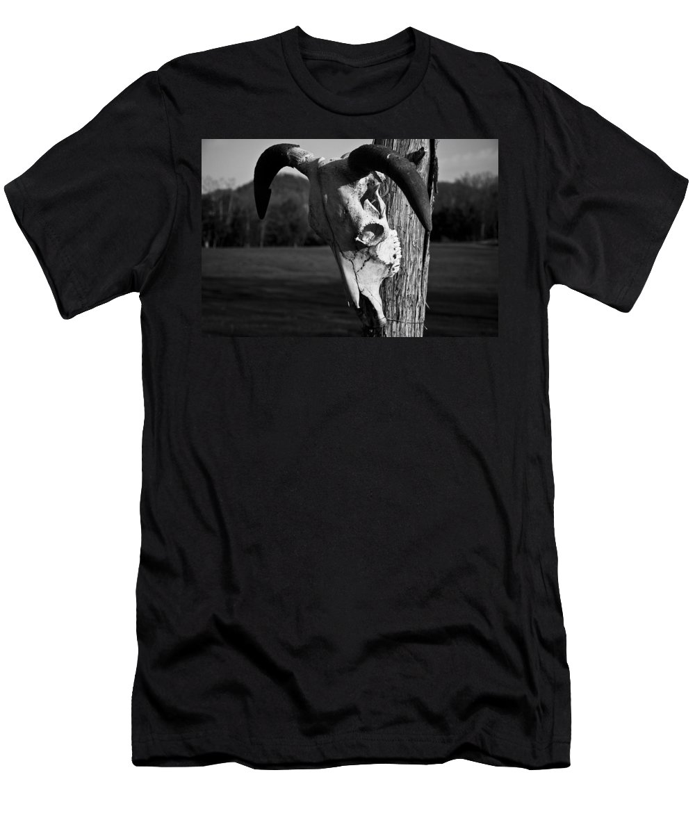 Cow Skull Men's T-Shirt (Athletic Fit) featuring the photograph Do Not Enter by Kacy Taylor