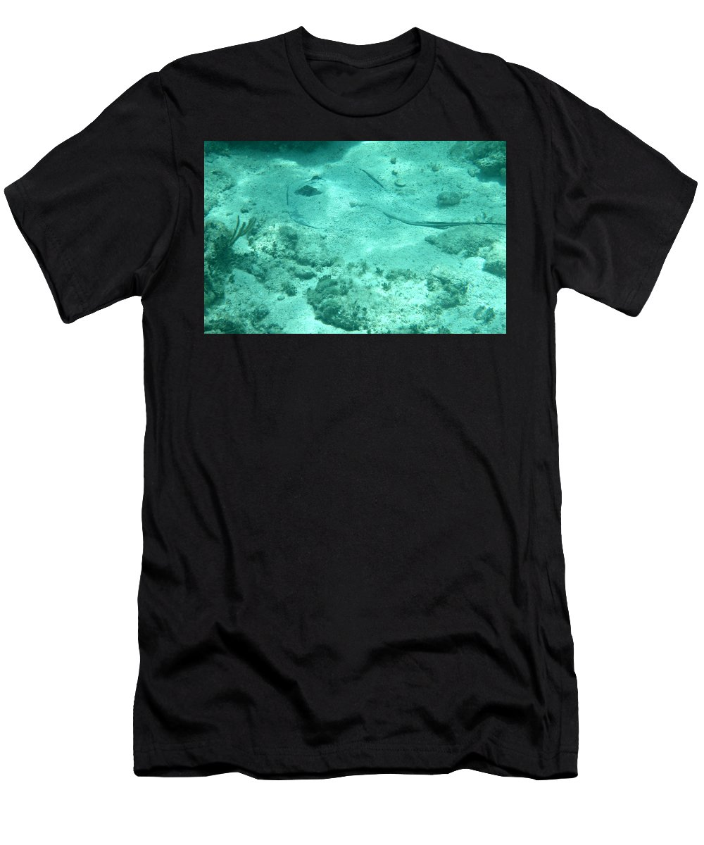 Stingray Men's T-Shirt (Athletic Fit) featuring the photograph Do You See What I See? by Kimberly Perry