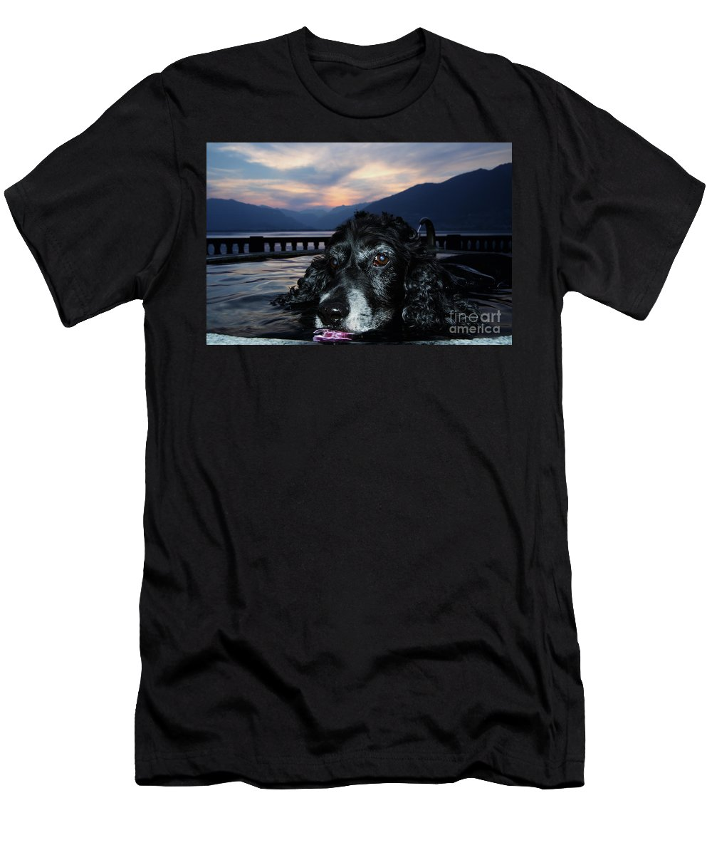 Dog Men's T-Shirt (Athletic Fit) featuring the photograph Dog In A Water Fountain by Mats Silvan