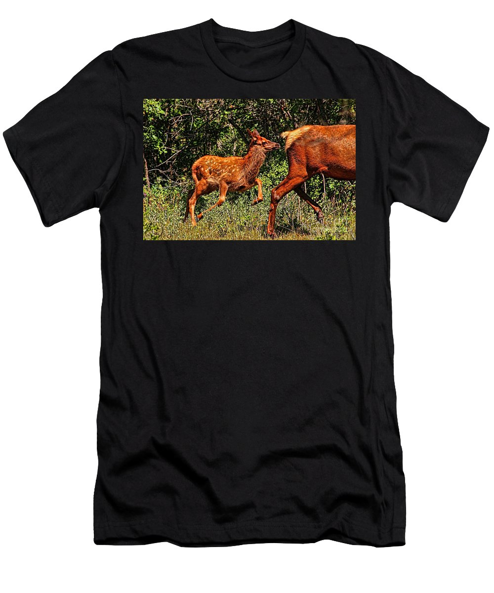 Fawn T-Shirt featuring the photograph Elk Fawn by Tommy Anderson