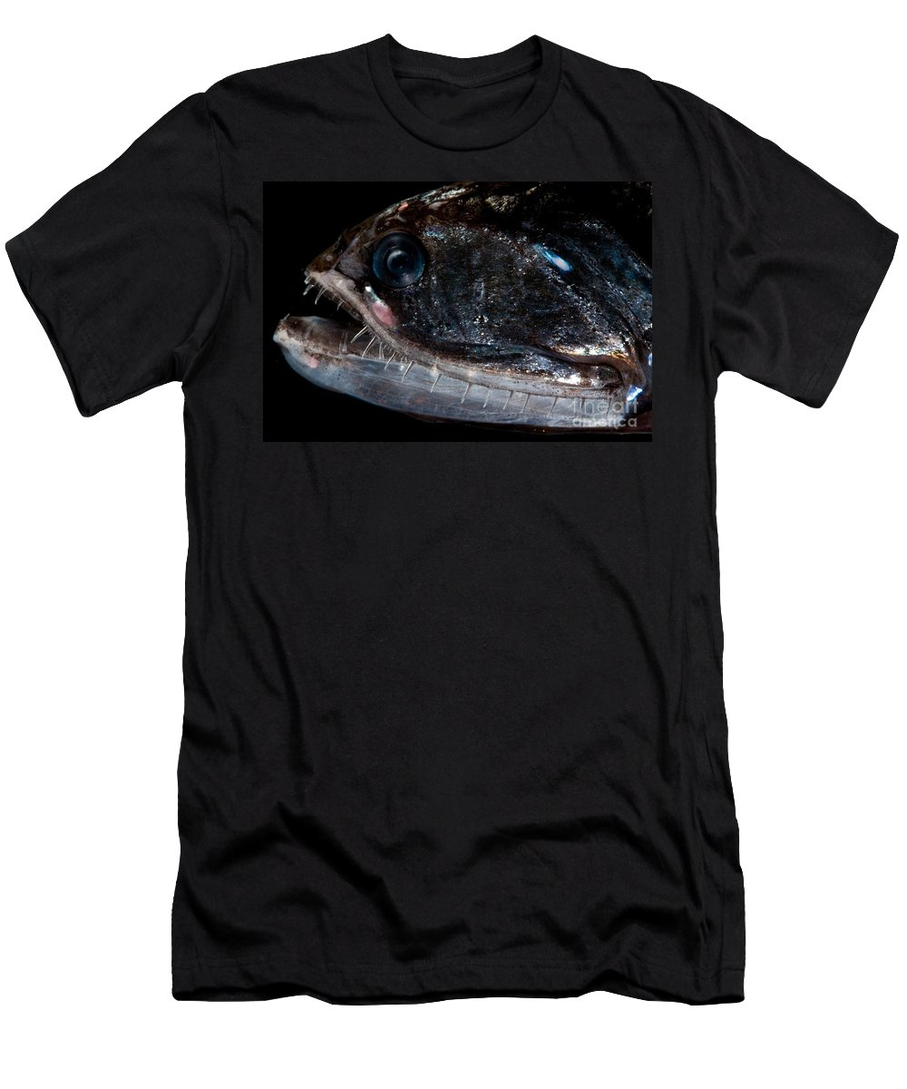 Sigmops Elongatum Men's T-Shirt (Athletic Fit) featuring the photograph Elongated Loosejaw by Dant� Fenolio