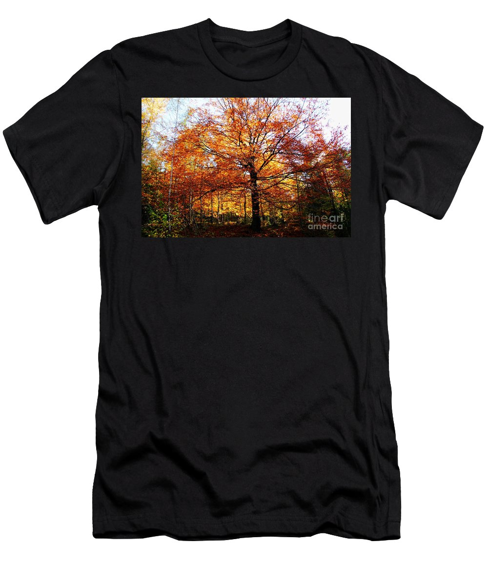 Eye Of The Forest Men's T-Shirt (Athletic Fit) featuring the photograph Eye Of The Forest by Mariola Bitner