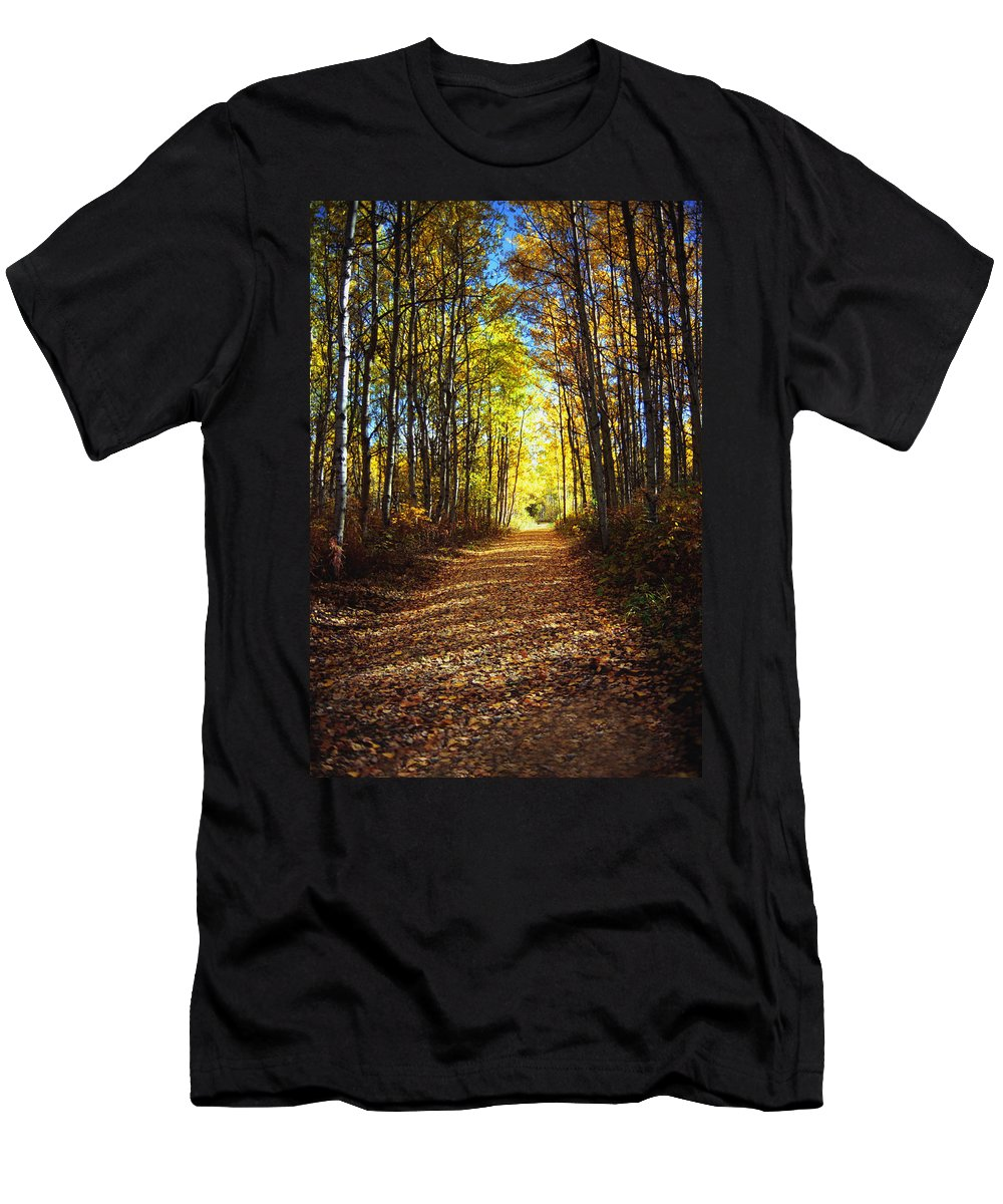 Autumn Men's T-Shirt (Athletic Fit) featuring the photograph Forest Path In Autumn by Darren Greenwood