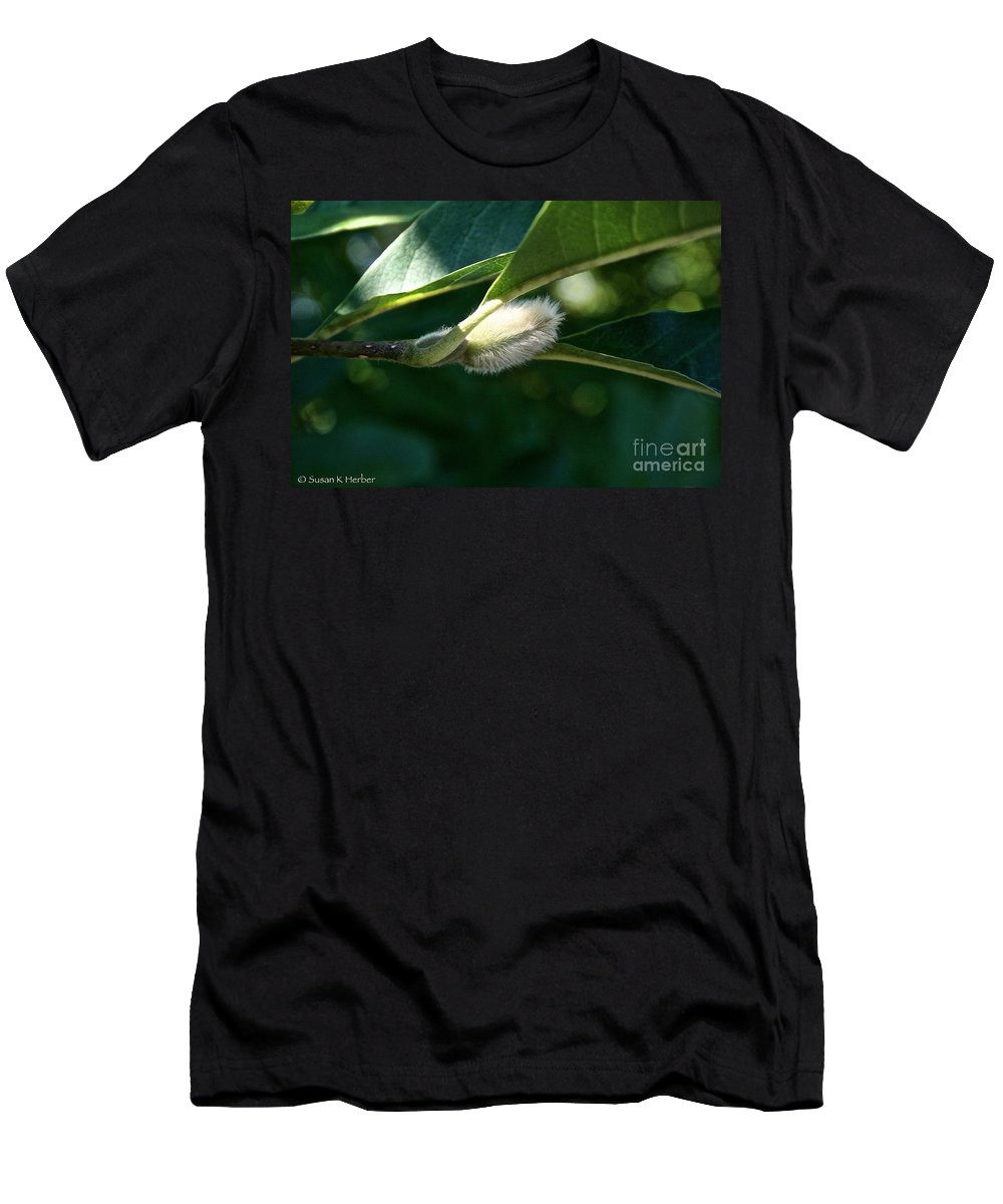 Tree Men's T-Shirt (Athletic Fit) featuring the photograph Fuzzy Magnolia by Susan Herber