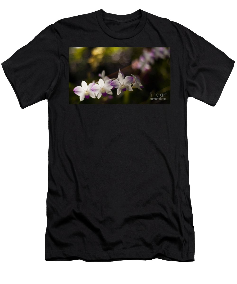 Tropical Men's T-Shirt (Athletic Fit) featuring the photograph Gentle Light by Mike Reid