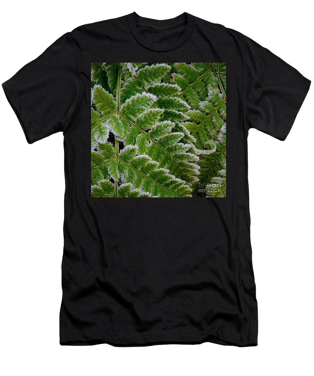 Green Men's T-Shirt (Athletic Fit) featuring the photograph Getting Colder by Ari Salmela