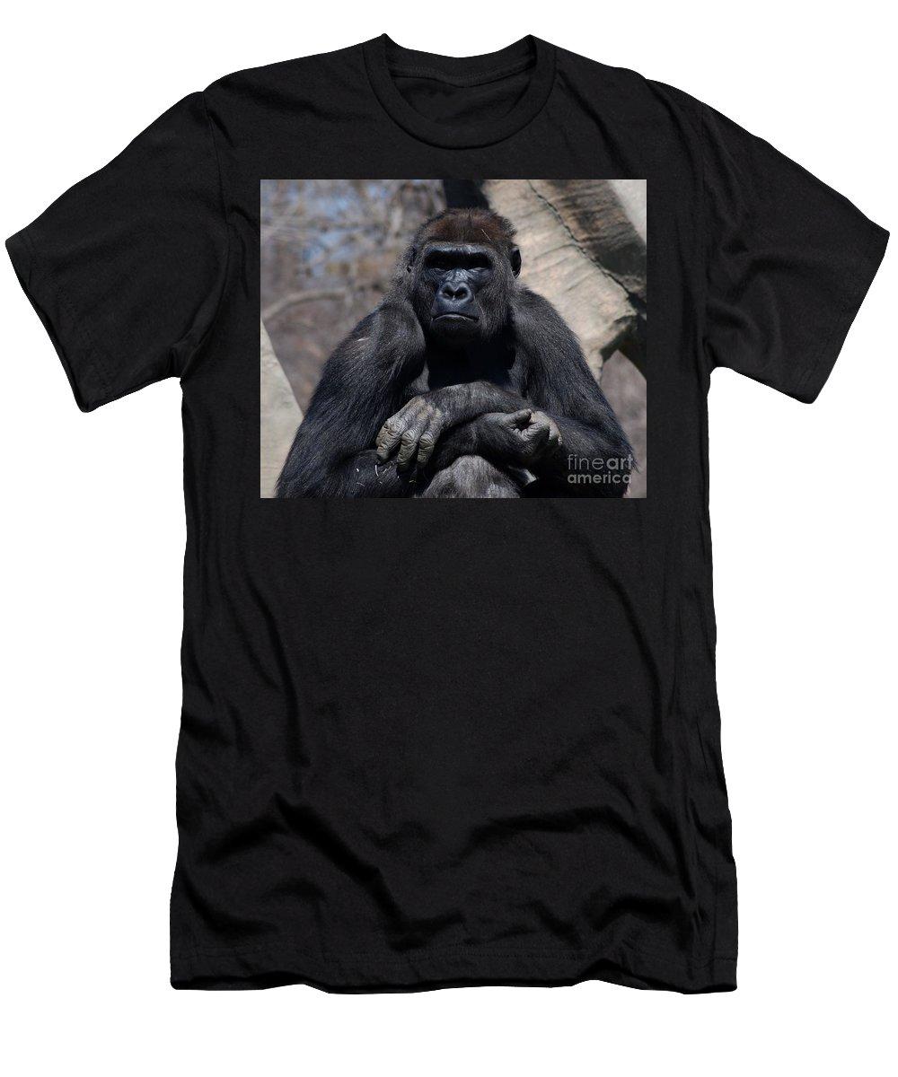 Gorilla Men's T-Shirt (Athletic Fit) featuring the photograph Gorilla by Ronald Grogan