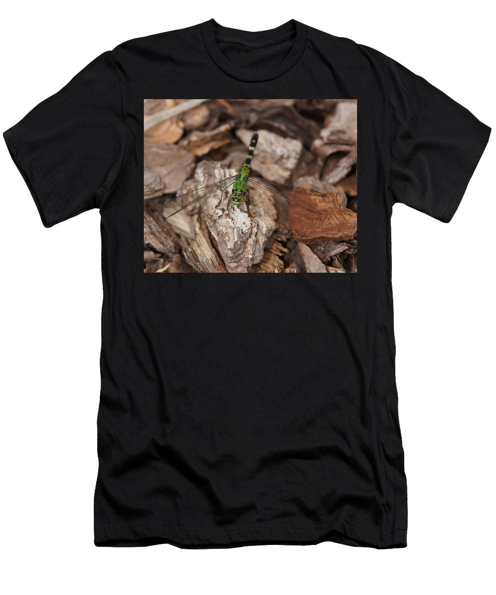 Dragonfly Men's T-Shirt (Athletic Fit) featuring the photograph Green Dragonfly by Megan Cohen