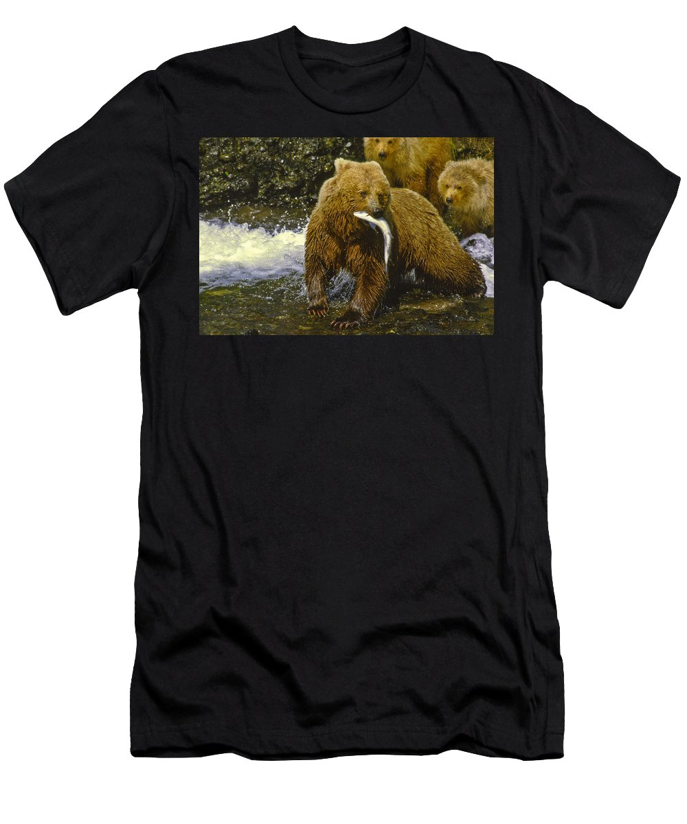Alakan Brown Bear With Cub Men's T-Shirt (Athletic Fit) featuring the photograph Grizzly Bear And Cubs by Boyd Norton