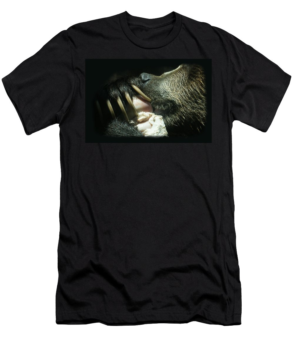Bear Men's T-Shirt (Athletic Fit) featuring the photograph Grizzly Eating by Ernie Echols