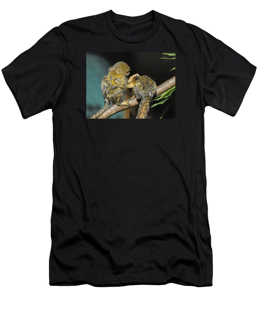 Pygmy Marmoset Men's T-Shirt (Athletic Fit) featuring the photograph Helping Hand by Marlene Challis