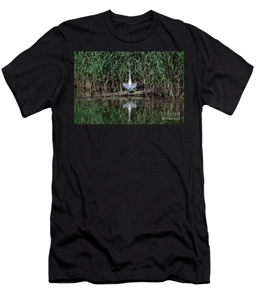 Heron Men's T-Shirt (Athletic Fit) featuring the photograph Heron Sunbath by Mats Silvan