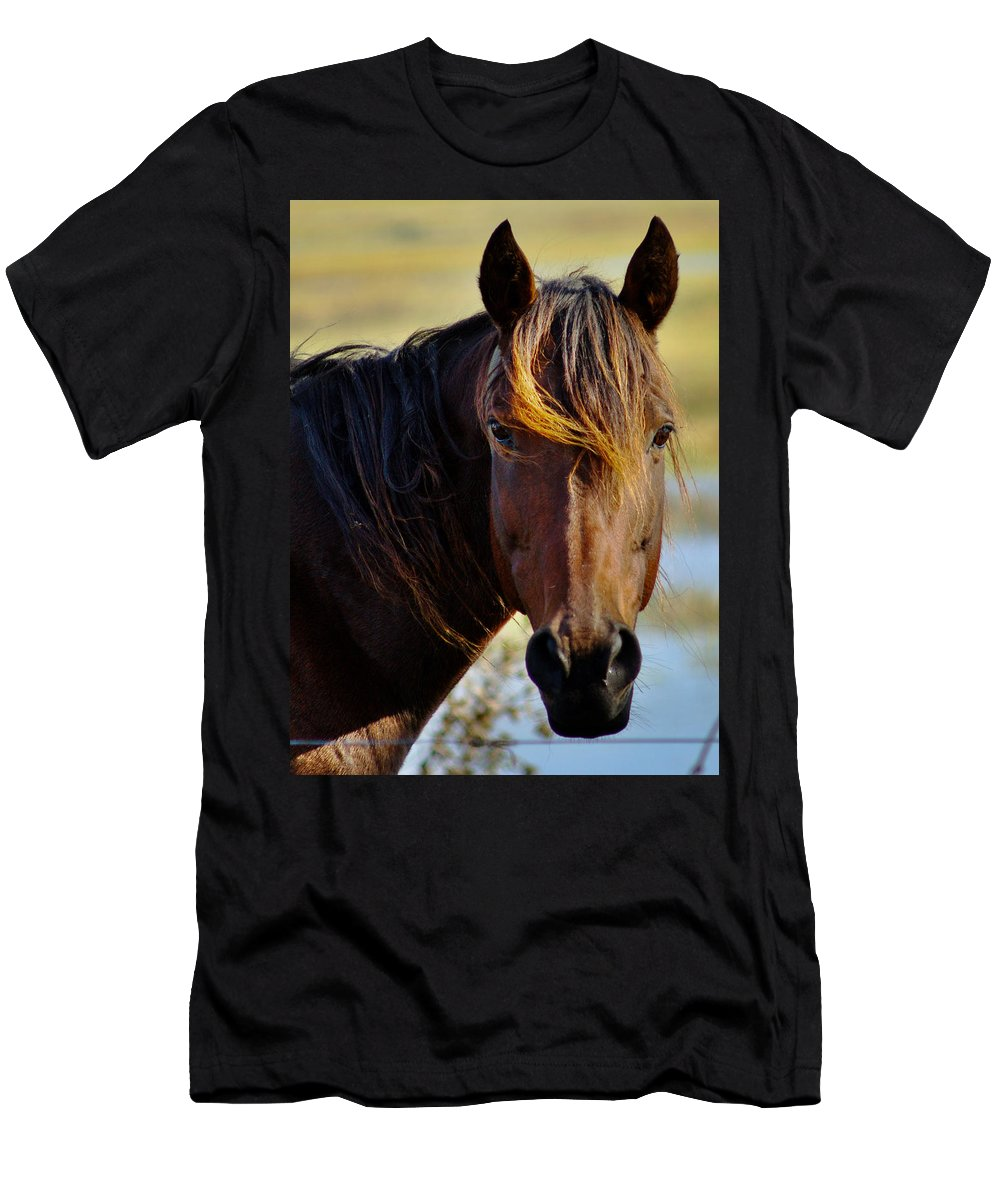 Horse1 Men's T-Shirt (Athletic Fit) featuring the photograph Highlights by Dennis Comins