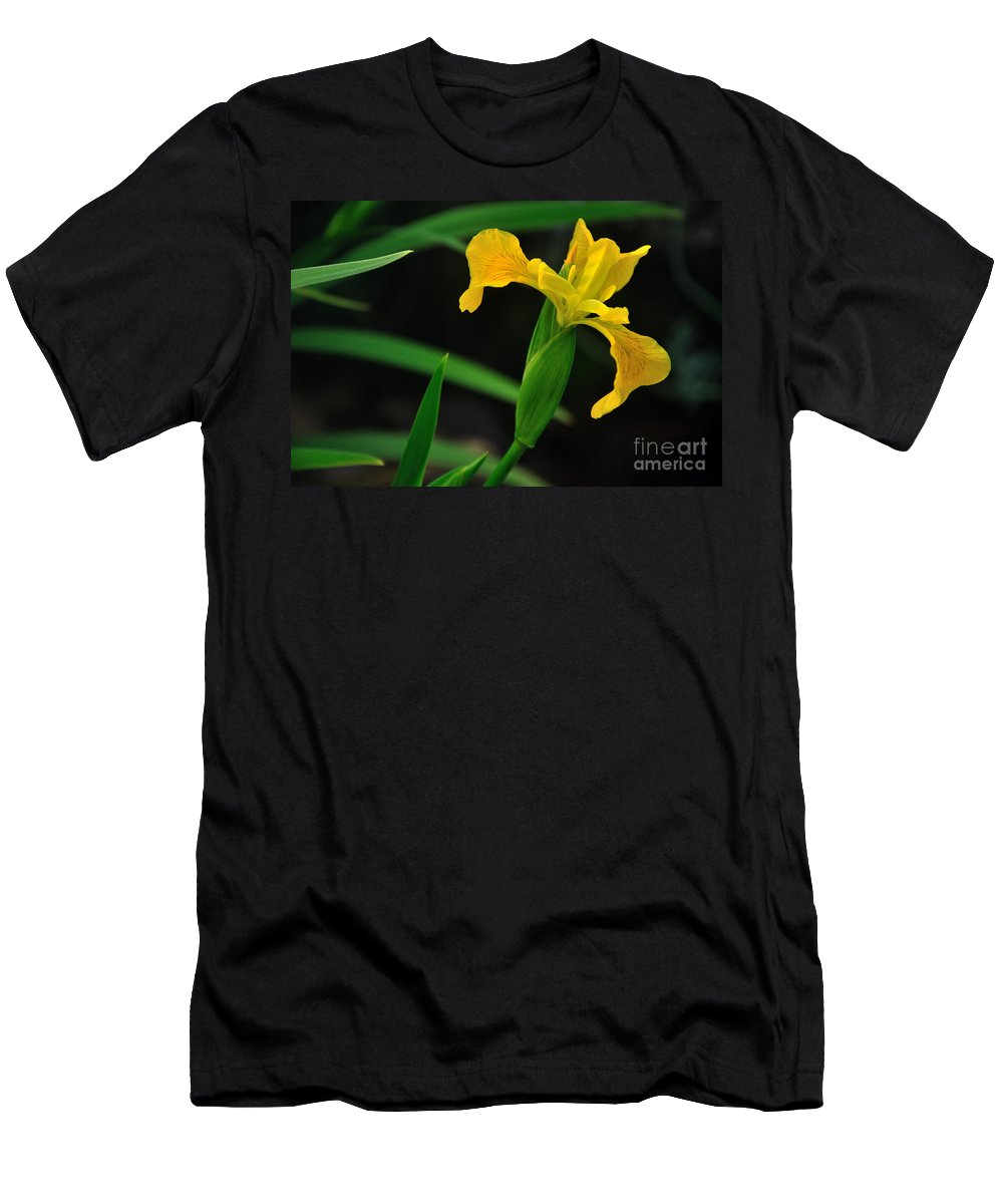 Photography Men's T-Shirt (Athletic Fit) featuring the photograph Iris In Yellow by Kaye Menner