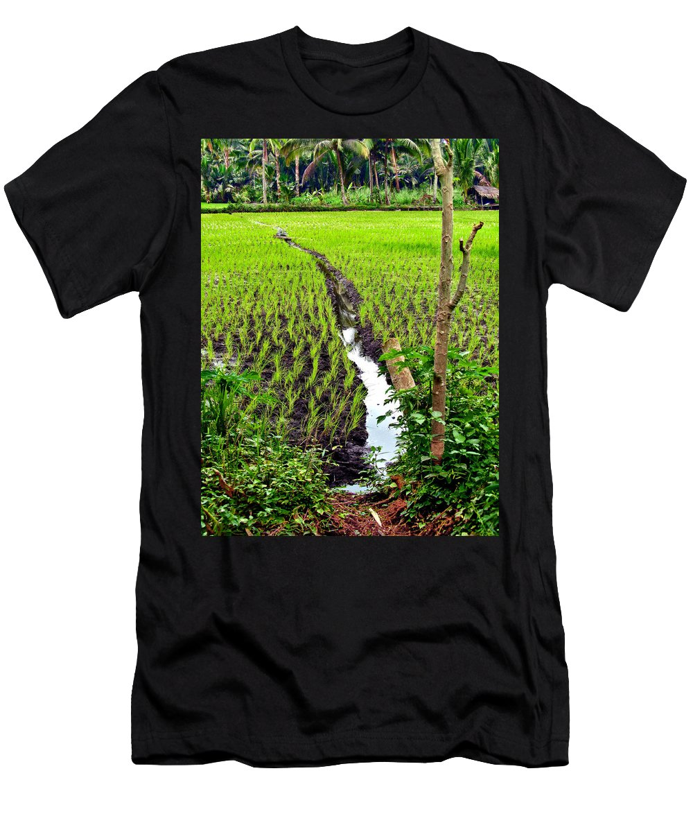 Agriculture Men's T-Shirt (Athletic Fit) featuring the photograph Irrigated Rice Field by Mark Sellers