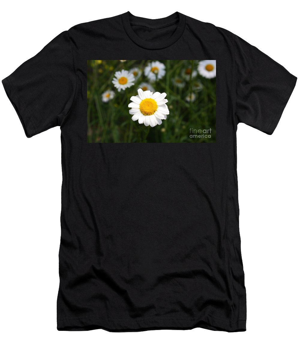 Daisy Men's T-Shirt (Athletic Fit) featuring the photograph Isn't That A Daisy by Tony Cooper
