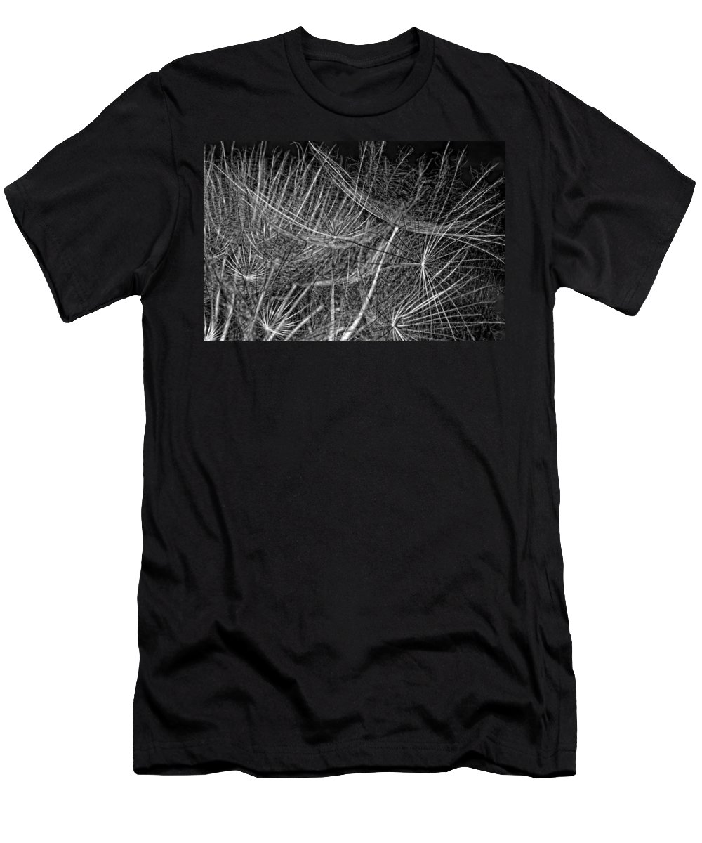 Asteraceae Men's T-Shirt (Athletic Fit) featuring the photograph Journey Inward Monochrome by Steve Harrington