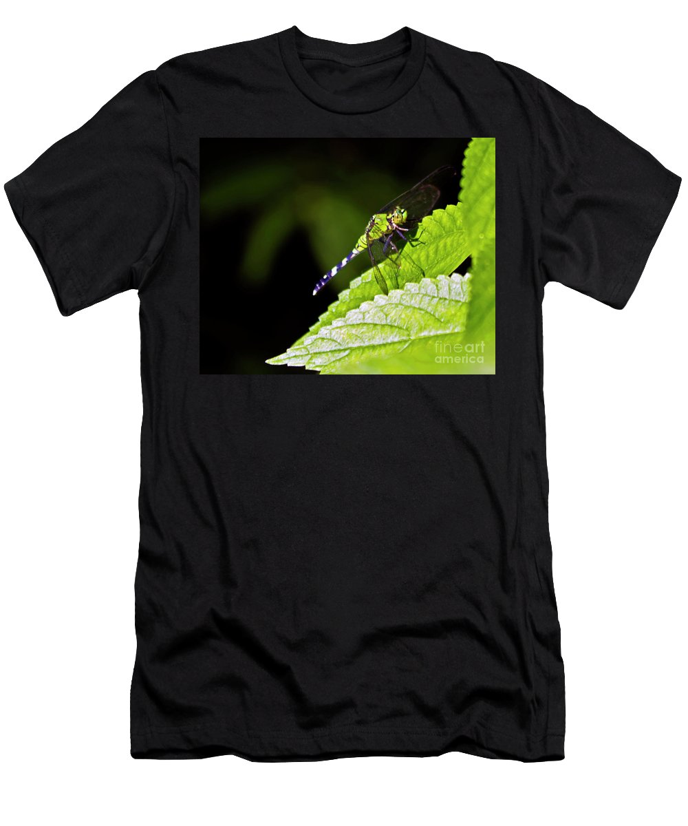 Dragonfly Men's T-Shirt (Athletic Fit) featuring the photograph Little Green Wings Two by Ken Frischkorn