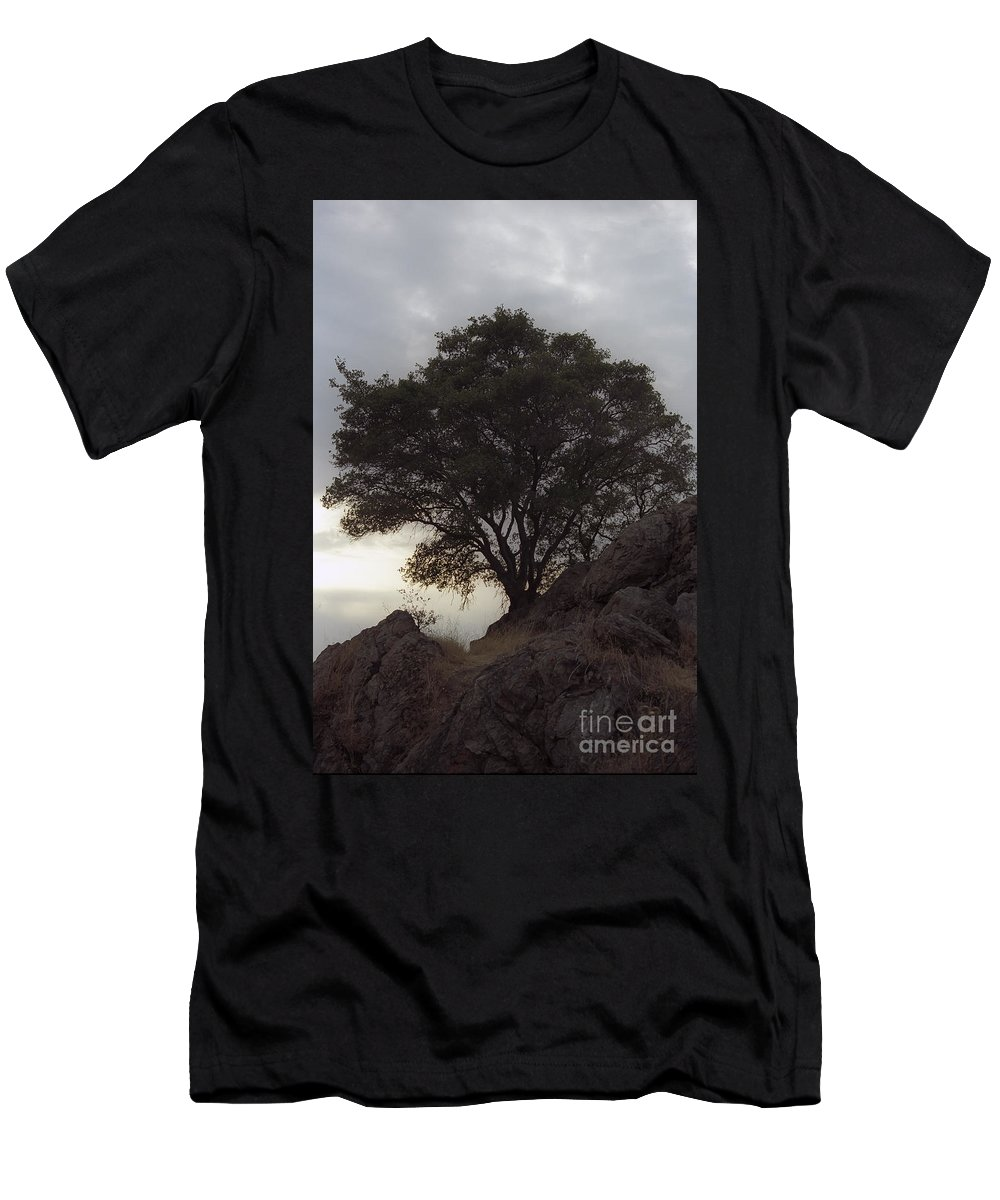 Knights Ferry Men's T-Shirt (Athletic Fit) featuring the photograph Lone Oak 2 by Jim And Emily Bush