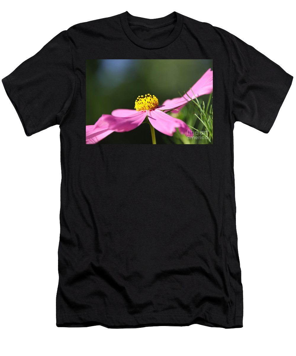 Cosmos Men's T-Shirt (Athletic Fit) featuring the photograph Loving The Sun by Dana Kern