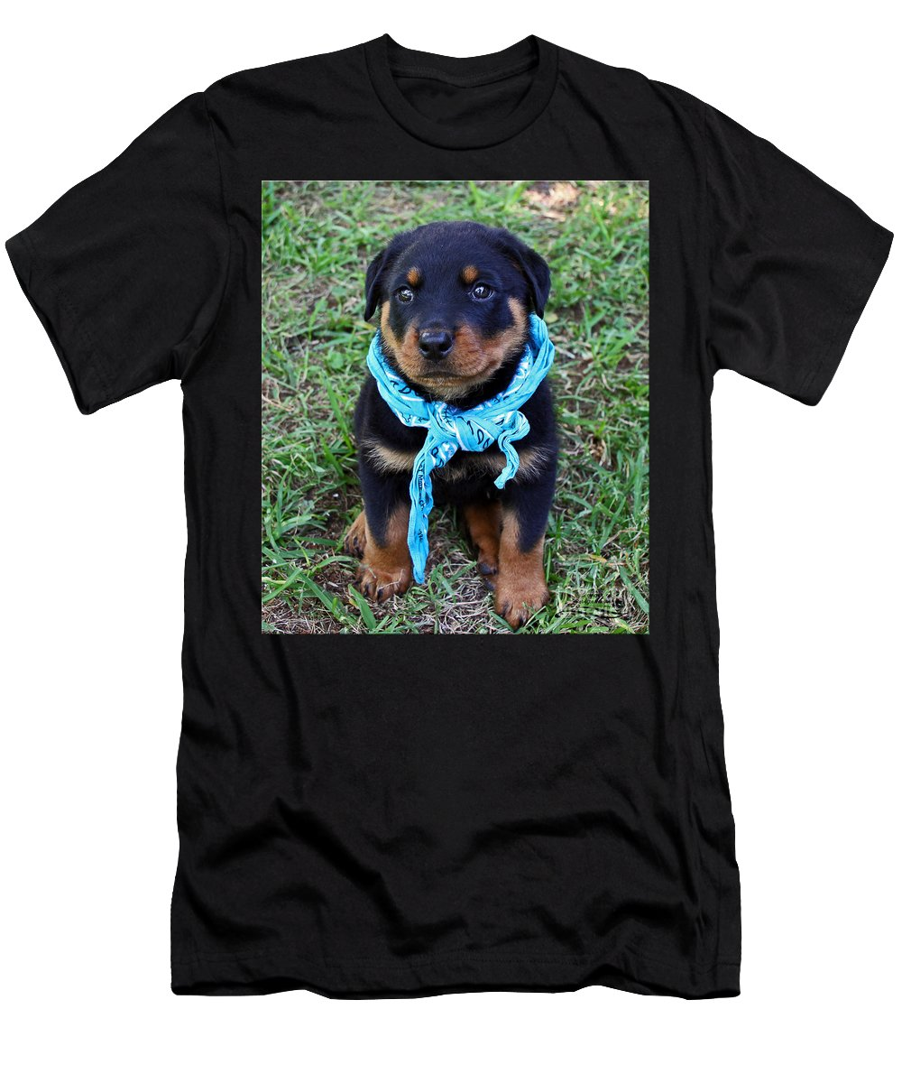 Rottweiler Men's T-Shirt (Athletic Fit) featuring the photograph Maxx by Rebecca Morgan