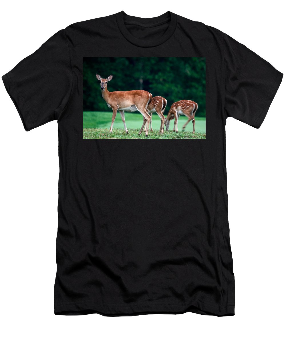 3 Deer Men's T-Shirt (Athletic Fit) featuring the photograph Mom With Twins by Sally Weigand