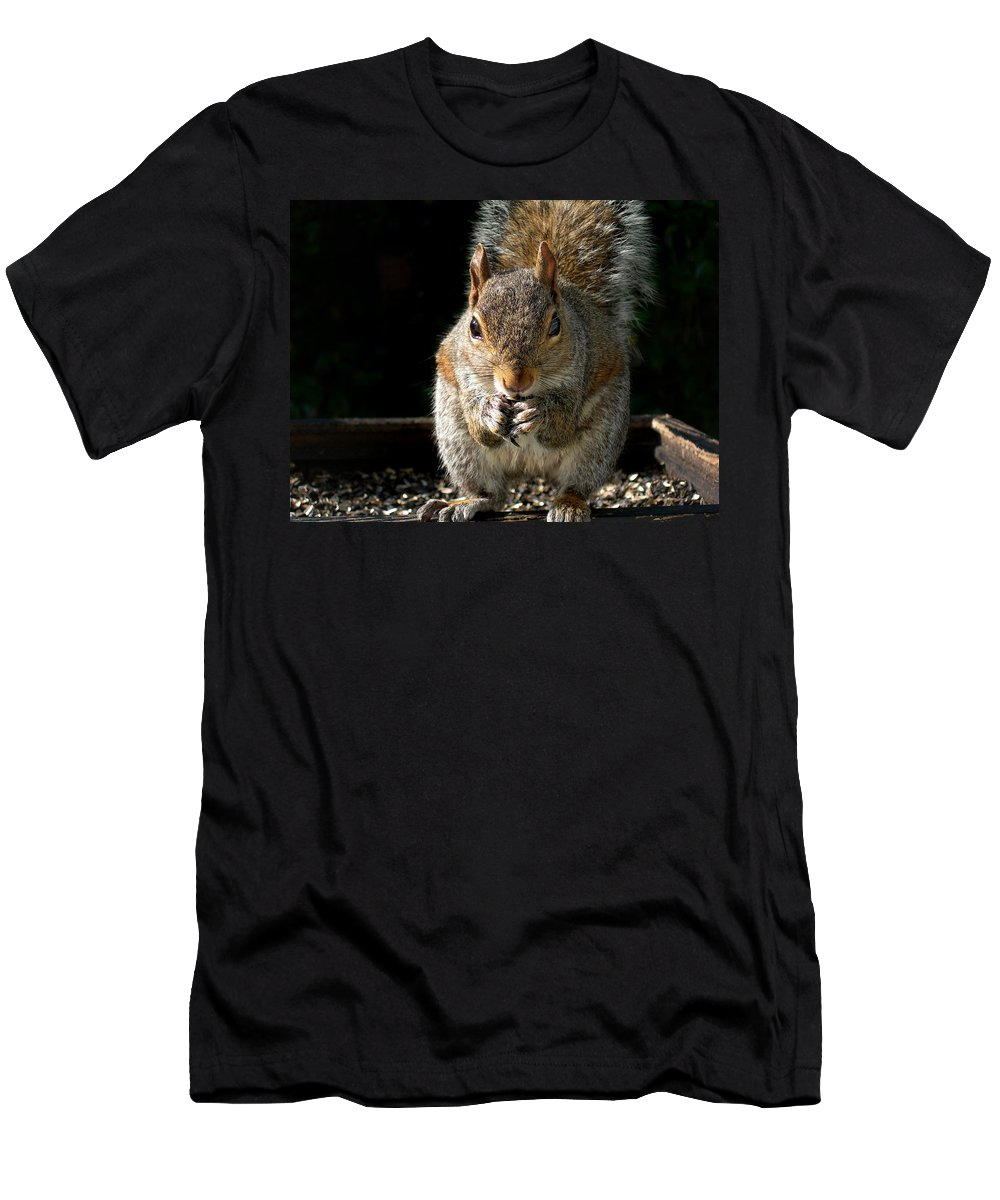 Squirrel Men's T-Shirt (Athletic Fit) featuring the photograph My Bird Feeder by Skip Willits