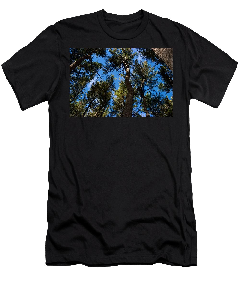 Demonstation Hall Men's T-Shirt (Athletic Fit) featuring the photograph Nests by Joseph Yarbrough