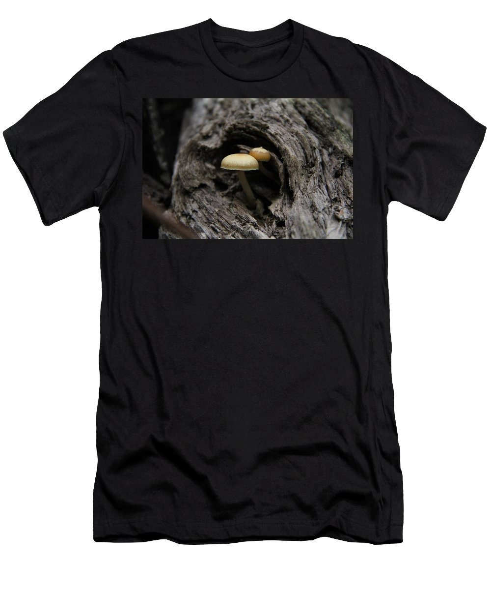 Mushroom Men's T-Shirt (Athletic Fit) featuring the photograph New Growth by Davandra Cribbie