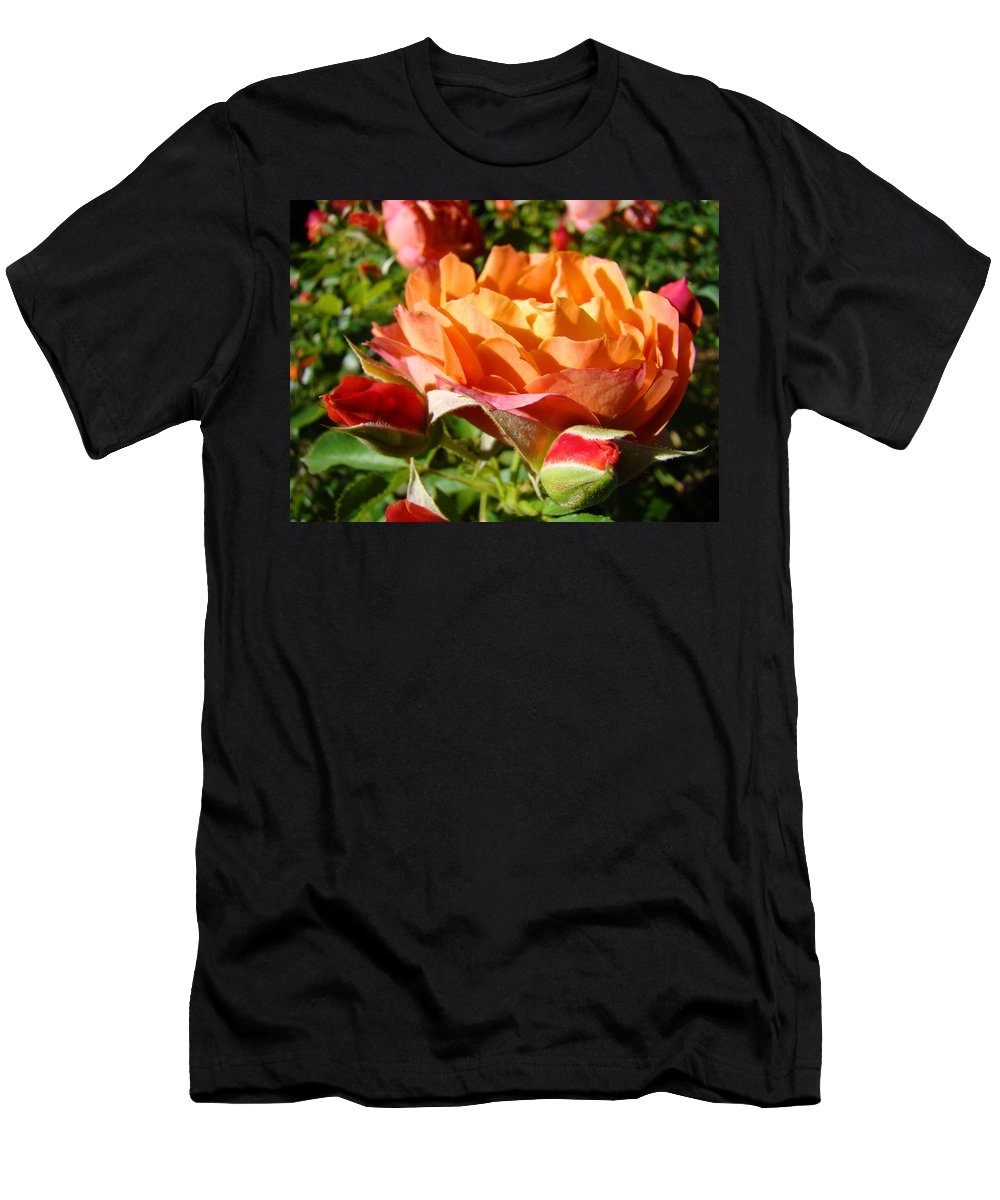 Rose T-Shirt featuring the photograph Orange Rose Flower Garden art prints Floral by Patti Baslee