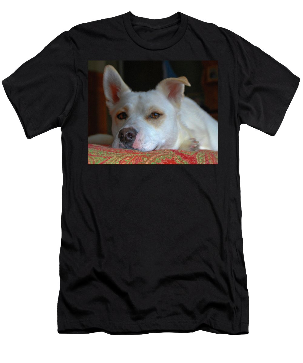 Dog Men's T-Shirt (Athletic Fit) featuring the photograph Orvis 0242 by Guy Whiteley
