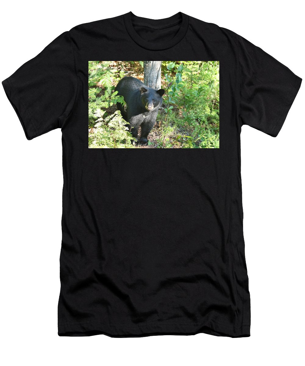 Black Bear Men's T-Shirt (Athletic Fit) featuring the photograph Our Little Shadow II by Teresa McGill