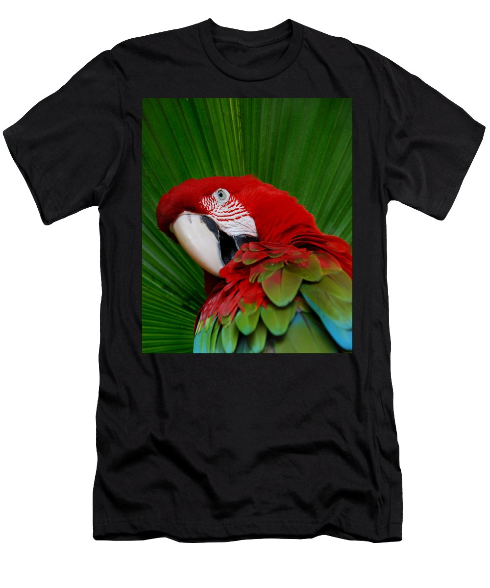 Parrot Men's T-Shirt (Athletic Fit) featuring the photograph Parrot Head by Skip Willits