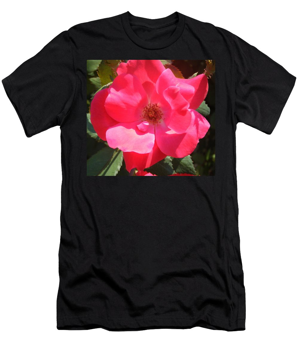 Rose Men's T-Shirt (Athletic Fit) featuring the photograph Perfection by April Patterson